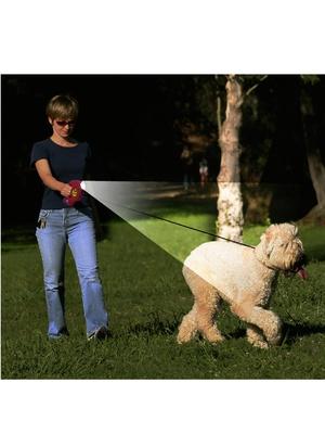 Laisse pour chien avec lampe torche, 3 e