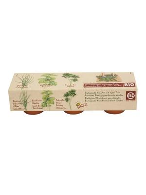 Graines d'herbes aromatiques bio + 3 pot