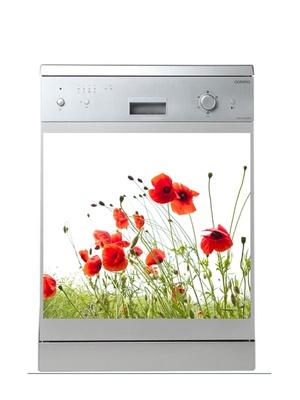Magnet lave-vaisselle