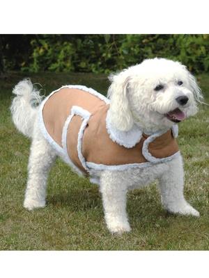 Manteau pour chien spécial grands froids