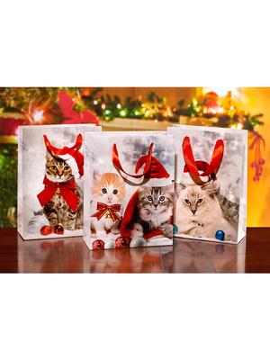 Lot de 3 sacs cadeaux Chatons