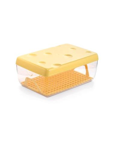 Boîte à fromage longue conservation